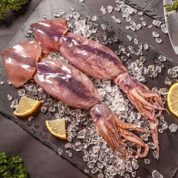 Pesce – Molluschi