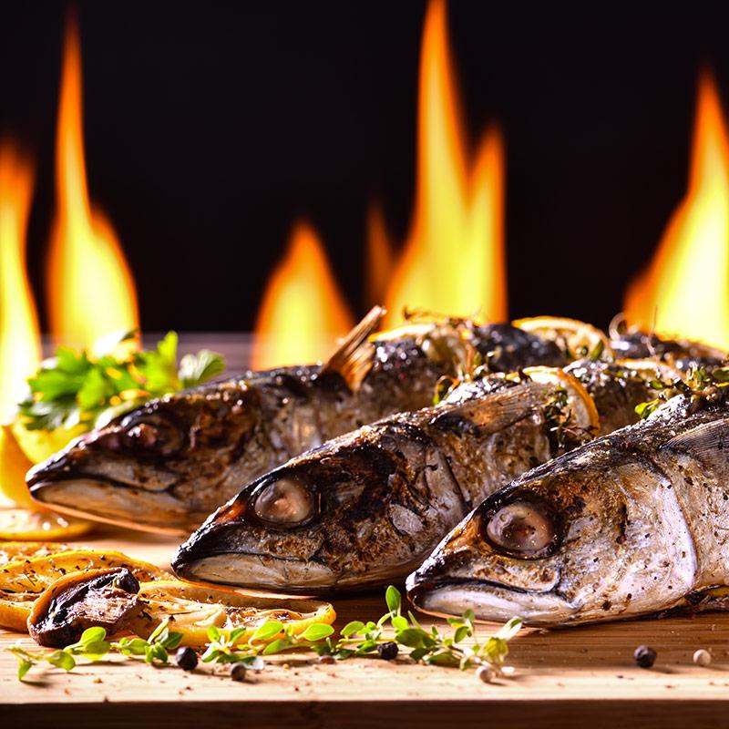 pesce categoria titan carni